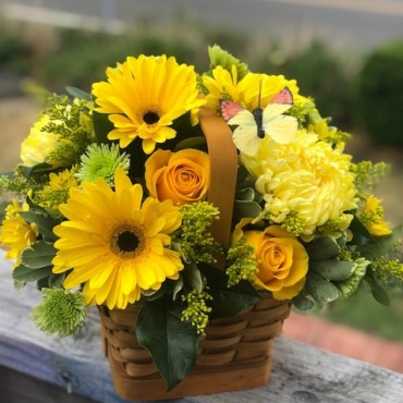 Basket Full of Sunshine
